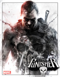 Marvel - The Punisher Plaque en métal
