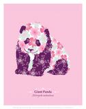 Giant Panda - WWF Contemporary Animals and Wildlife Print Affiche par  WWF