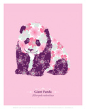 Giant Panda - WWF Contemporary Animals and Wildlife Print Print by  WWF