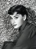 American Actress Audrey Hepburn in 1954 Photo