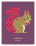 Red Squirrel - WWF Contemporary Animals and Wildlife Print Print by  WWF