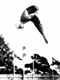 Pat McCormick, First to Win Back-To-Back Olympic Gold Medals in Platform and Springboard Diving Photo