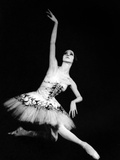 Eva Evdokimova (1948-2009) Danseuse Americano-Bulgare Photo