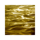 Liquid Gold Giclee Print by Charlie Carter