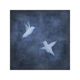 Flight in Blue II Giclee Print by Chris Donovan