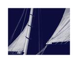 Schooner Sails II Giclee Print by Charlie Carter
