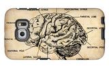 Vintage Brain Map Anatomy Galaxy S6 Edge Case by  NaxArt