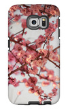 Cherry Blossoms I Galaxy S6 Edge Case by Susan Bryant