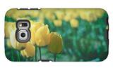 Yellow Tulip Field Galaxy S6 Edge Case
