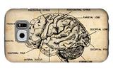 Vintage Brain Map Anatomy Galaxy S6 Case by  NaxArt