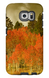 Portrait of Aspens in Autumn Galaxy S6 Edge Case by Vincent James
