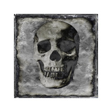 Skull III Giclee Print by Martin Wagner