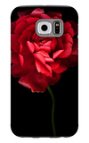 Red Ranunculus Galaxy S6 Case by Magda Indigo