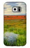 Wildflowers near Lancaster, California Galaxy S6 Case by Vincent James