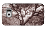 Old Oak Tree in the Oakland Hills Galaxy S6 Case by Vincent James