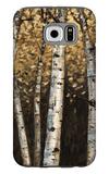 Shimmering Birches 2 Galaxy S6 Case by Arnie Fisk