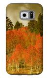 Portrait of Aspens in Autumn Galaxy S6 Case by Vincent James
