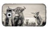 Highland Cattle Galaxy S6 Case by Mark Gemmell