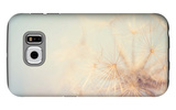 Dandelion Dreams Galaxy S6 Case by Laura Evans