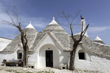 A Traditional Trullo House at Masseria Tagliente Photographic Print by Stuart Forster