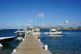 Dock at Oualie Beach, Nevis, St. Kitts and Nevis Photographic Print by Robert Harding