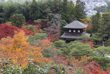 The Silver Pavilion and Gardens in Autumn Photographic Print by Stuart Black
