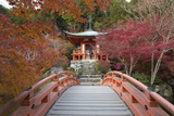 Japanese Temple Garden in Autumn, Daigoji Temple, Kyoto, Japan Photographic Print by Stuart Black