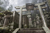 Buddhist Cemetery of Oku-No-In, Koyasan (Koya-San), Kansai, Japan Photographic Print by Stuart Black