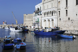 Blue Wooden Boats and Fishing Vessels in the Walled Harbour of Monopoli in Apulia, Italy, Europe Photographic Print by Stuart Forster