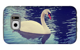 Mute Swan, Cygnus Olor, Single Bird on Dark Water Toned with a Retro Vintage Instagram Filter Effec Galaxy S6 Case by  graphicphoto