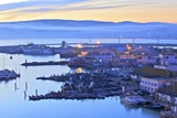The Harbour at Dawn, Tangier, Morocco, North Africa, Africa Photographic Print by Neil Farrin