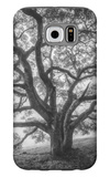 Wild Oak Tree in Black and White Portait, Petaluma, California Galaxy S6 Case by Vincent James