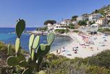 Beach of Seccheto, Island of Elba, Livorno Province, Tuscany, Italy Photographic Print by Markus Lange