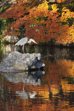 Heron on Lake in Autumn, Eikan-Do Temple, Northern Higashiyama, Kyoto, Japan Photographic Print by Stuart Black
