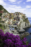 Manarola, Cinque Terre, UNESCO World Heritage Site, Liguria, Italy, Europe Photographic Print by Gavin Hellier