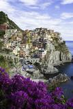 Manarola, Cinque Terre, UNESCO World Heritage Site, Liguria, Italy, Europe Photographic Print by Gavin Hellier