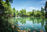 Peaceful Lake Scene with Greenery at One of the Lesser known Spots at West Lake in Hangzhou Photographic Print by Andreas Brandl