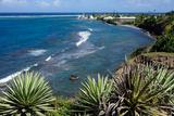 Atlantic Coast, St. Kitts, St. Kitts and Nevis Photographic Print by Robert Harding
