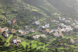 Terraces, Valle Gran Rey, La Gomera, Canary Islands, Spain, Europe Photographic Print by Markus Lange