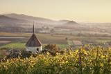 View over Ehrenstetten Oelbergkapelle Chapel to Staufen Castle Photographic Print by Markus Lange