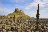 Lindisfarne Castle, Holy Island, Northumberland, England, United Kingdom, Europe Photographic Print by Gary Cook