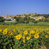Hilltop Village Above Sunflower Field, Pals, Catalunya (Costa Brava), Spain Fotodruck von Stuart Black