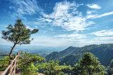 Pine Tree and Green Mountains at Tian Mu Shan Four Sides Peak, Zhejiang, China Photographic Print by Andreas Brandl