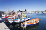 Port of Marciana Marina with Fishing Boats Photographic Print by Markus Lange