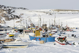 Ilulissat Harbour, Greenland, Denmark, Polar Regions Photographic Print by Sergio Pitamitz