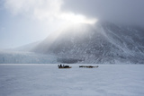 Inuit Hunter and His Dog Team Travelling on the Sea Ice, Greenland, Denmark, Polar Regions Photographic Print by Louise Murray