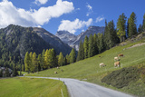 Road to Albula Pass, Graubunden, Swiss Alps, Switzerland, Europe Fotografisk tryk af Angelo Cavalli