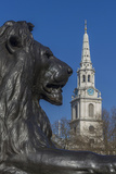 Lion at Foot of Nelson's Column and St. Martin-In-The-Fields Church Photographic Print by Rolf Richardson