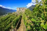 The Castel Grumello Built on an Morenic Outcrop Photographic Print by Roberto Moiola