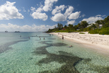 Spotts Beach, Grand Cayman, Cayman Islands, West Indies, Caribbean, Central America Photographic Print by Sergio Pitamitz